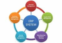 ERP Interfaces